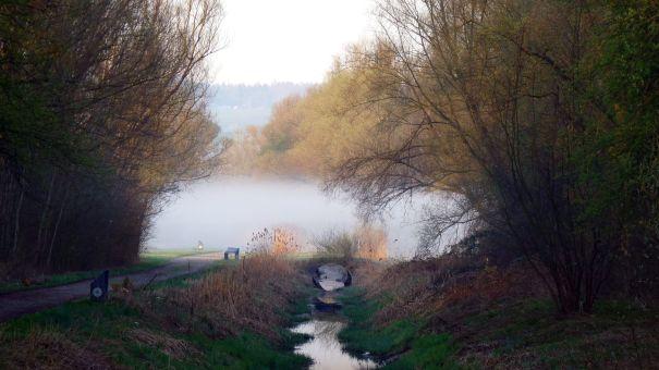 Gottlieberweg mit morgendlichem Nebel, 03.04.2011 (Foto S. Trösch)